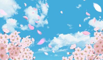 aozora to sakura